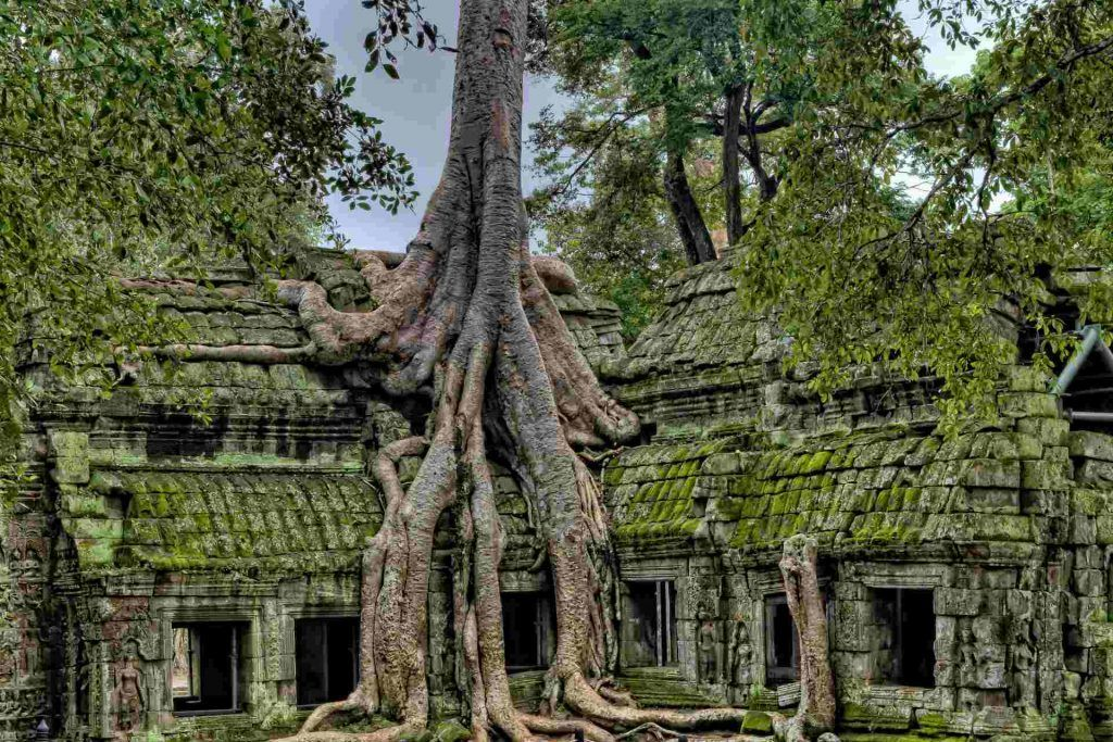 Cambodia Angkor without the Crowds